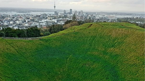 to do in Auckland