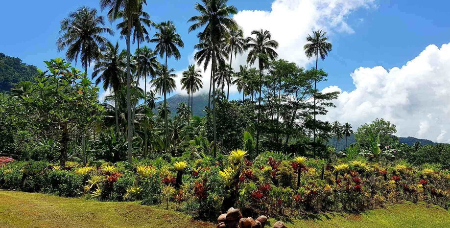 Holiday in Samoa