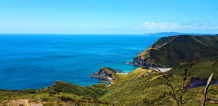 Visit Northland New Zealand