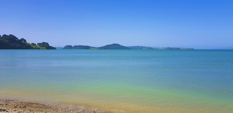 Best beaches in East Auckland