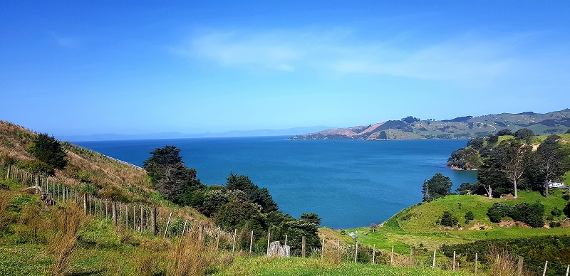Places to go in Aucklan