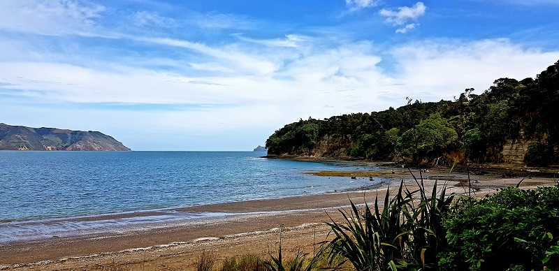 Best West Auckland Beaches
