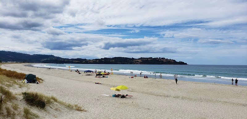 Best beaches in Northern Auckland, New Zealand
