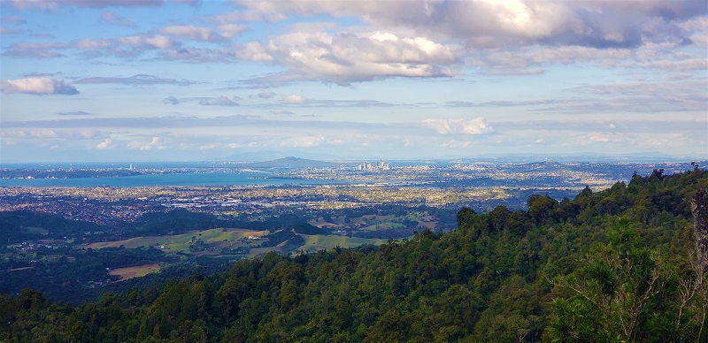 Auckland City Lookout from Scenic Drrive