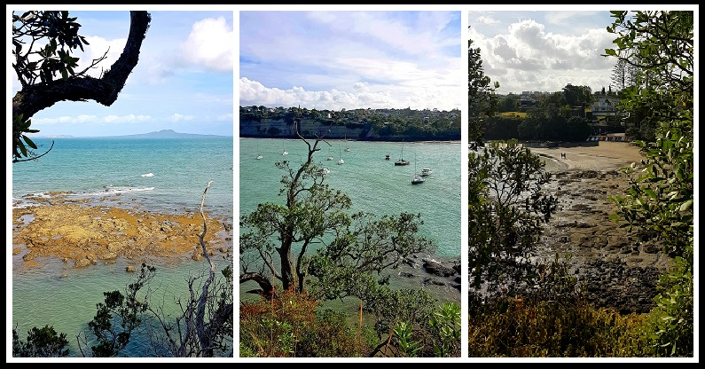 Best lookouts on Northern Auckland, New Zealand