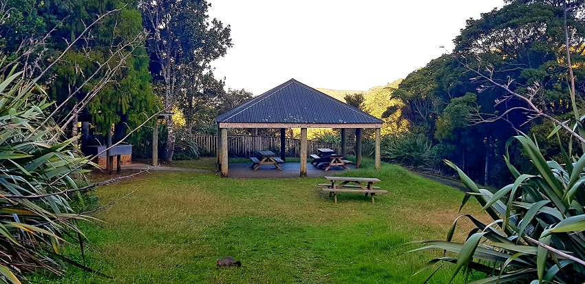 Upper Nihutuop Dam Picnic Area in Waitakere Ranges