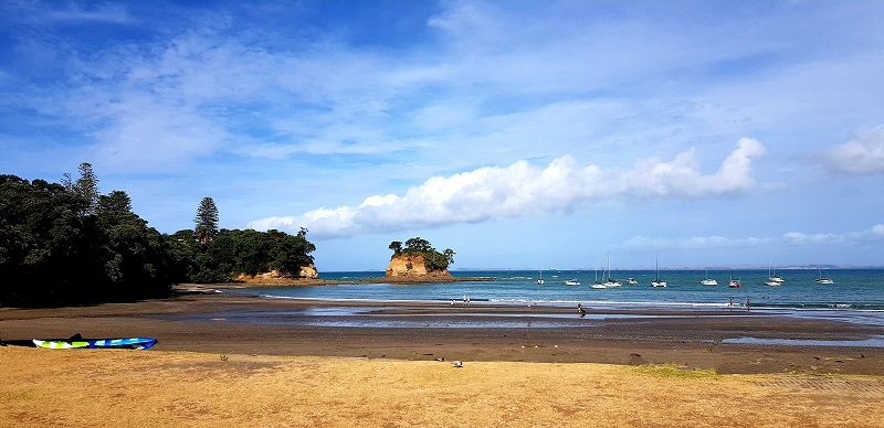 Things to do in Torbay, North Auckland, New Zealand