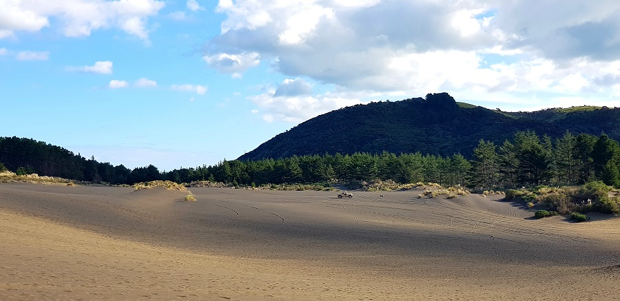 Black sand Dunes in Bethells Beach in Waitakere Ranges