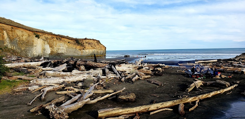 Best Beach in Whanganui