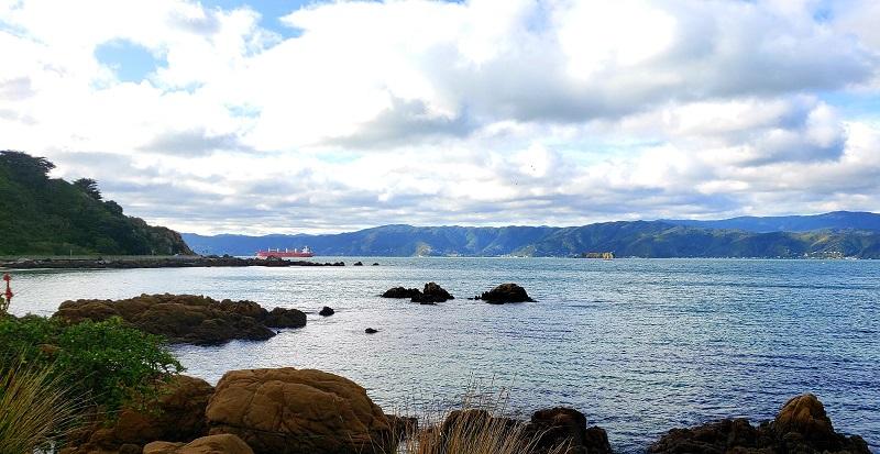 Best Beach Wellington