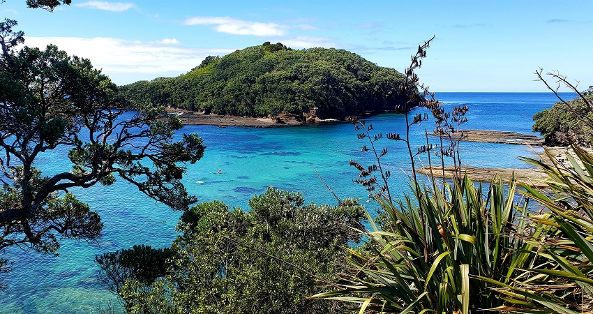 Best Snorkeling in New Zealand