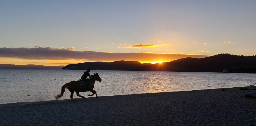 Things to see in Taupo