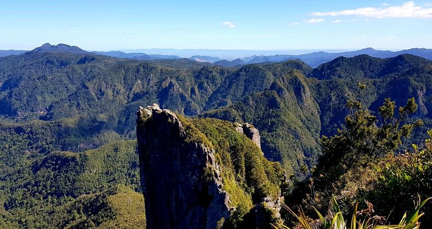 Best free walks in New Zealand