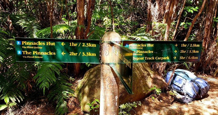 Best free walks in New Zealand, Coromandel