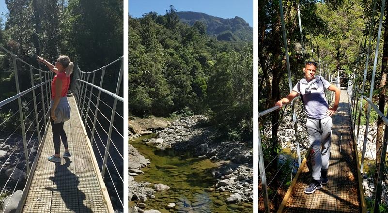 Hiking the pinnacles in Coromandel, New Zealand
