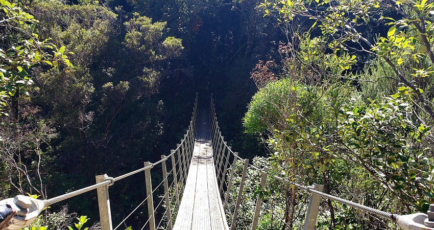 Swing Bridge at The Pinnacles Hike