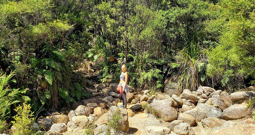 Hiking the Pinnacles Coromandel