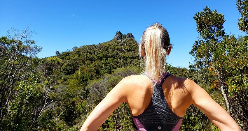 View over The Pinnacles Summit in Coromandel