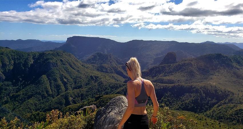 The Pinnacles Summit Lookout in Coromandel