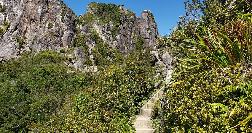 Steps and ladder in The Pinnacles Trail
