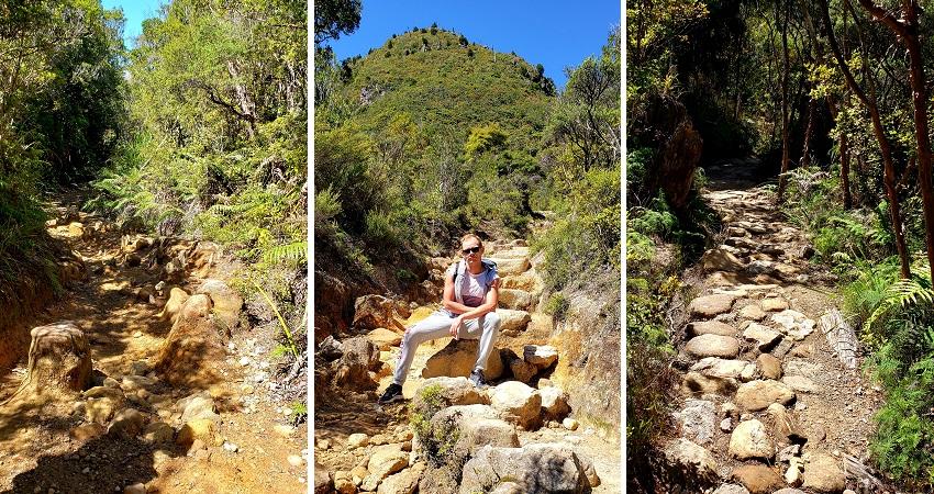Climbing The Pinnacles, Coromandel