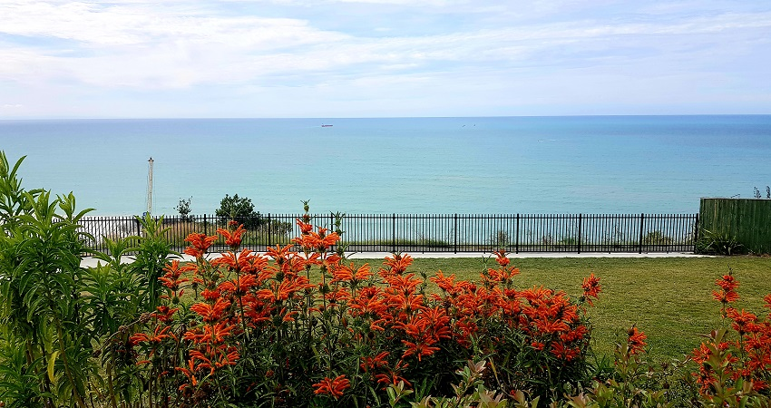 Things to do in Napier
