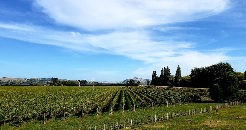 things to do in Hawke's Bay, New Zealand