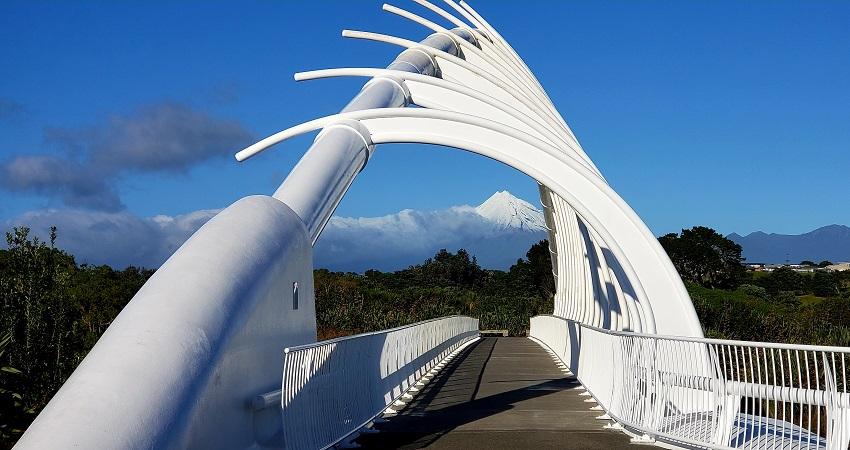 Rewa Rewa Bridge and Mt Tarakai on background